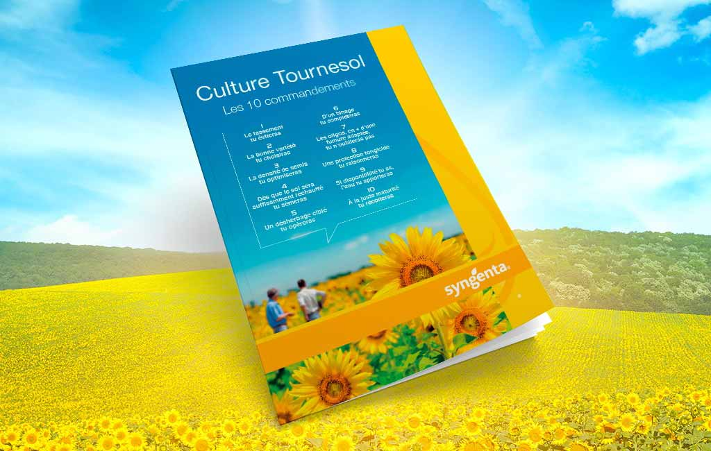 Brochure tournesol, les 10 commandements