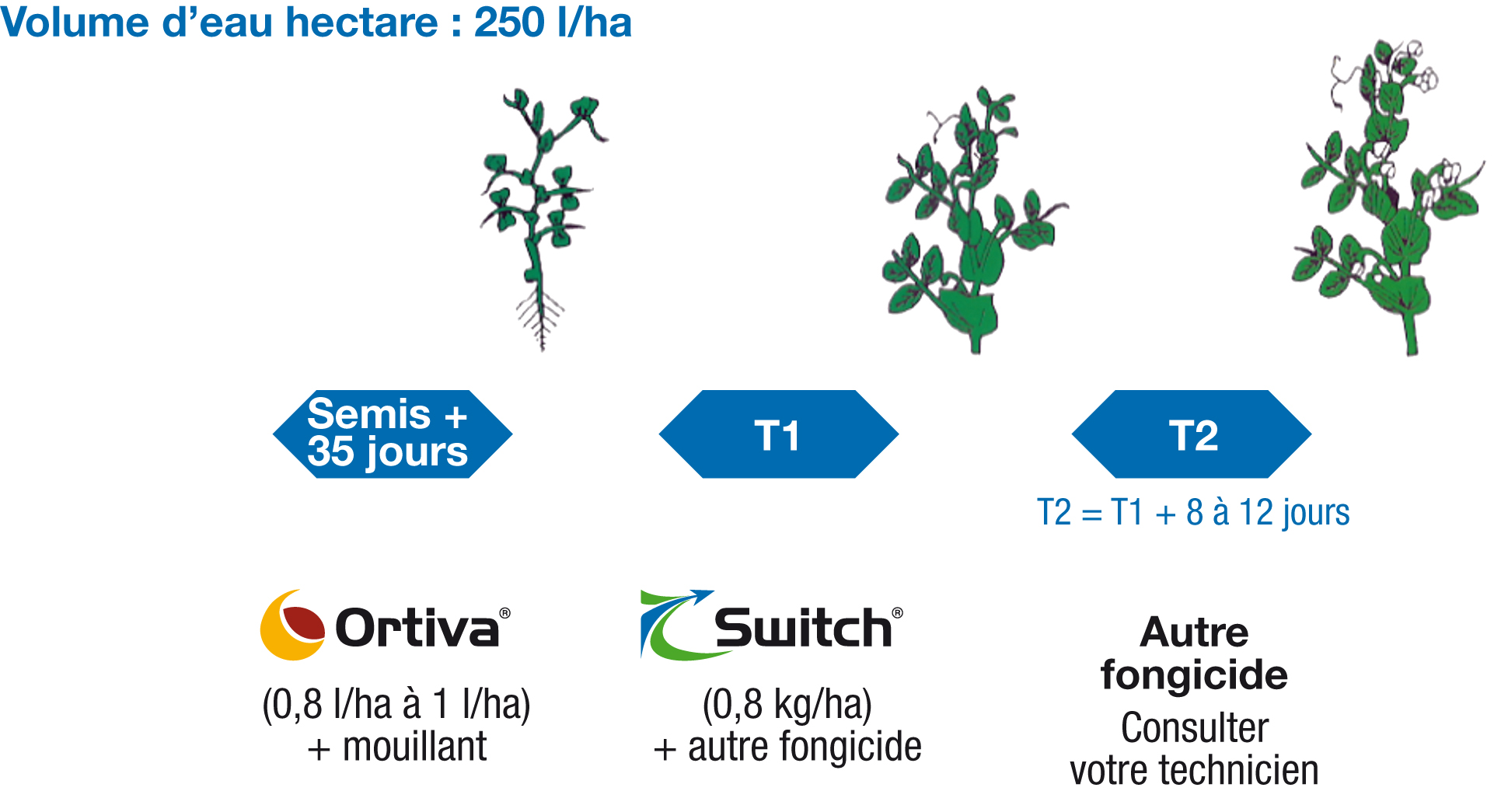 Positionnement de Switch sur pois de conserve