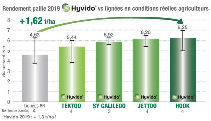 Orges Hyvido : rendement paille 2019