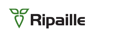 RIPAILLE, Betterave industrielle