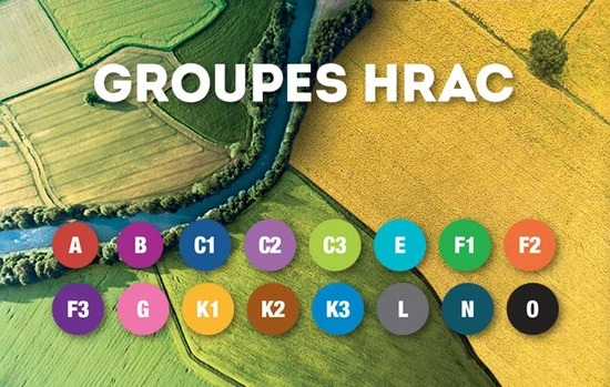 Groupes HRAC
